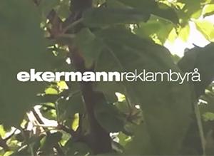 Ekermann reklambyrå återförsäljare av Sharespines integrationsprodukter